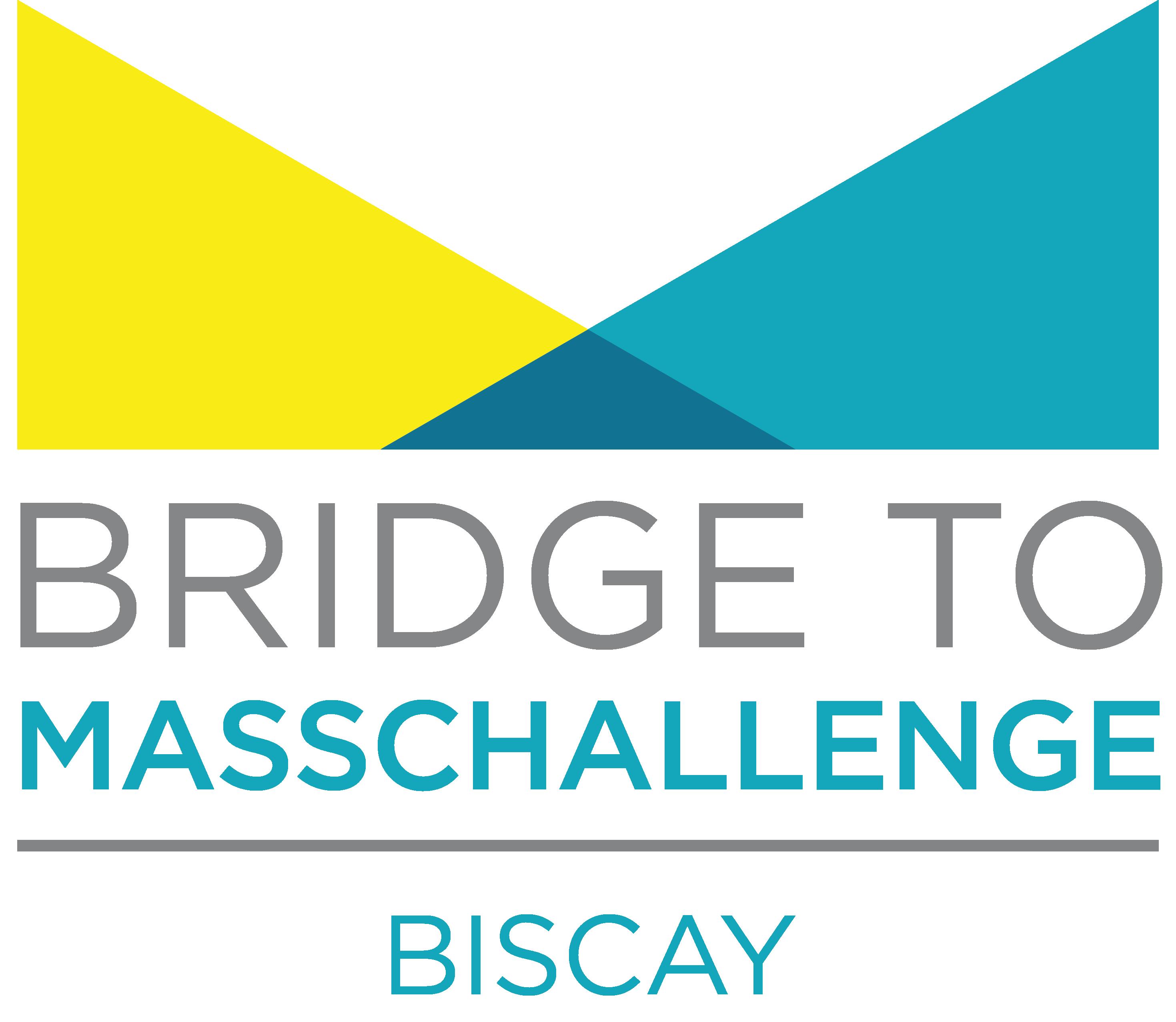 Bridge to MC-Bizkaia-1.png